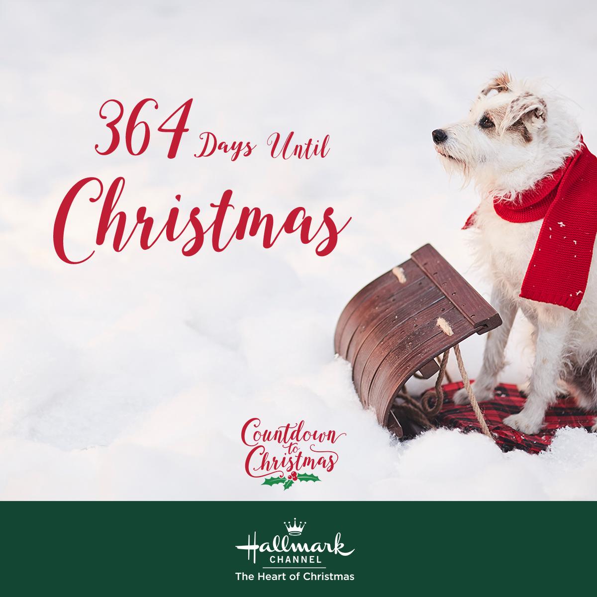 Days Until Christmas 2020 Only 364 days until Christmas! Follow us on Pinterest for