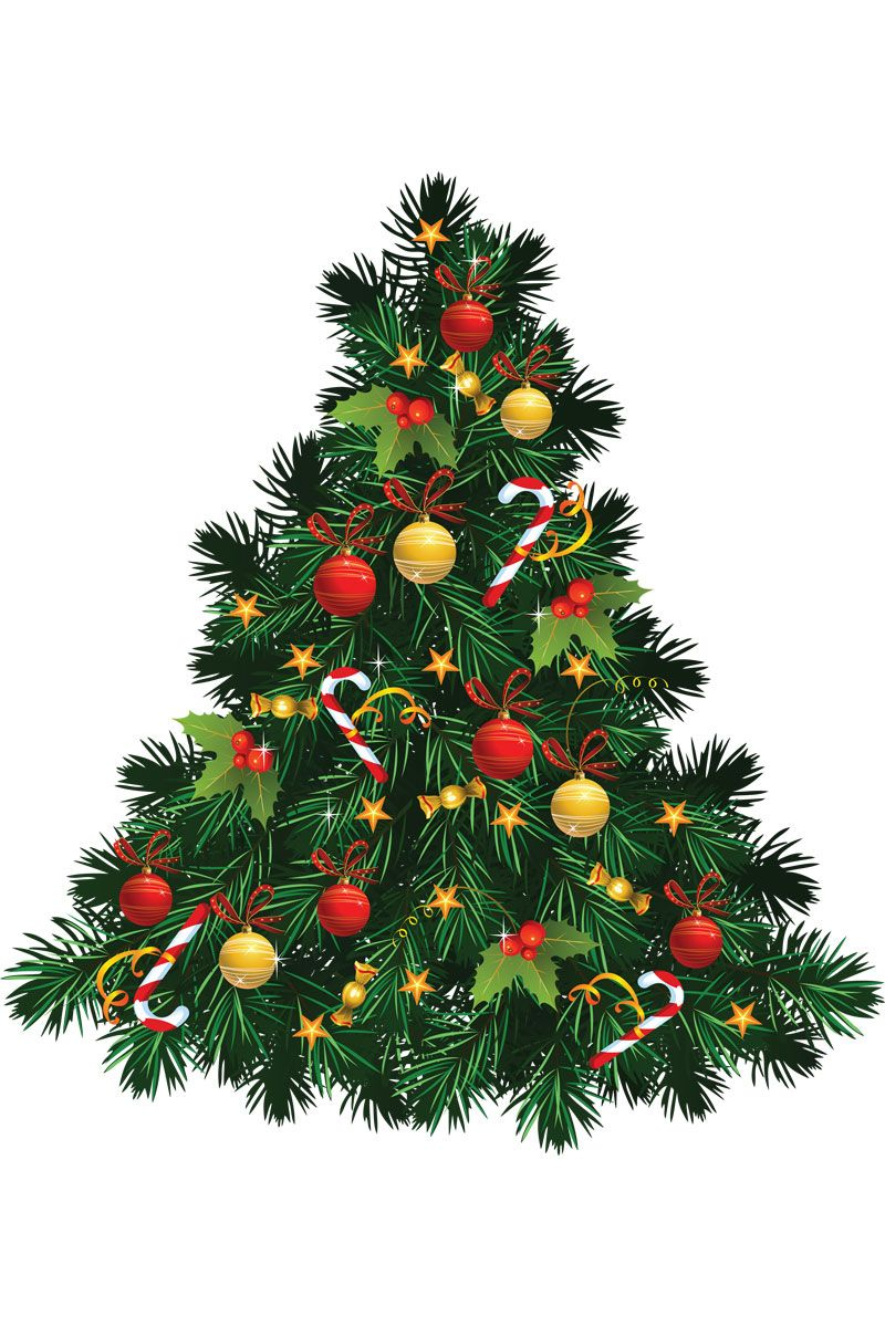 Where Did Christmas Come From.The History Of The Christmas Tree Christmas Christmas