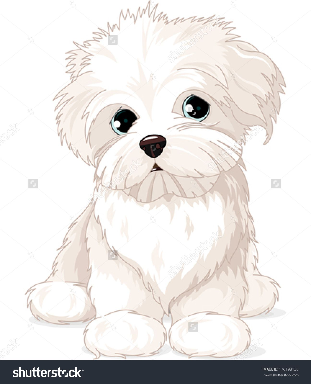 clipart maltese puppy dog [ 1296 x 1600 Pixel ]