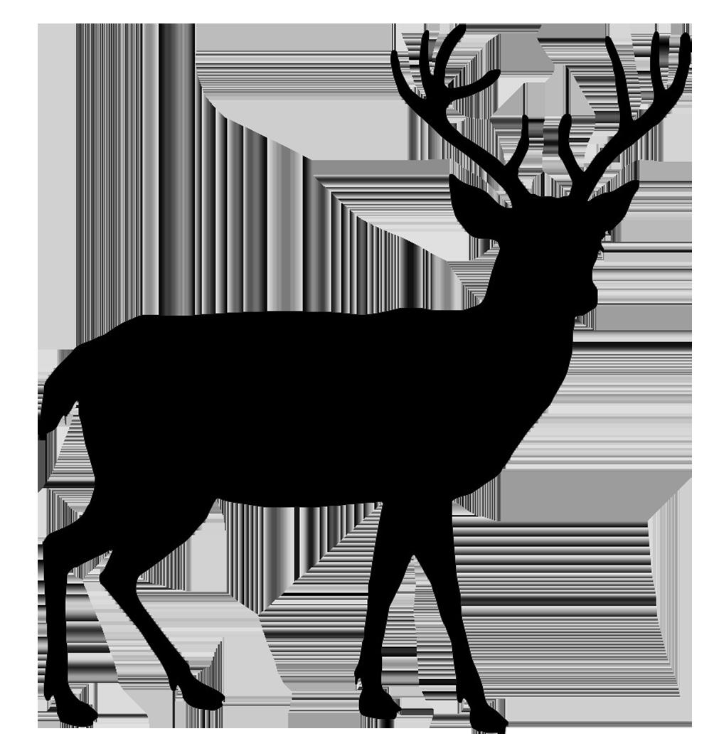 Beautiful Deer Silhouette Diy Idea S Pinterest