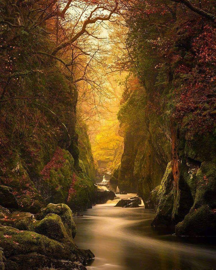 Fairy Glen Gorge Conwy River United Kingdom Sun Sunset