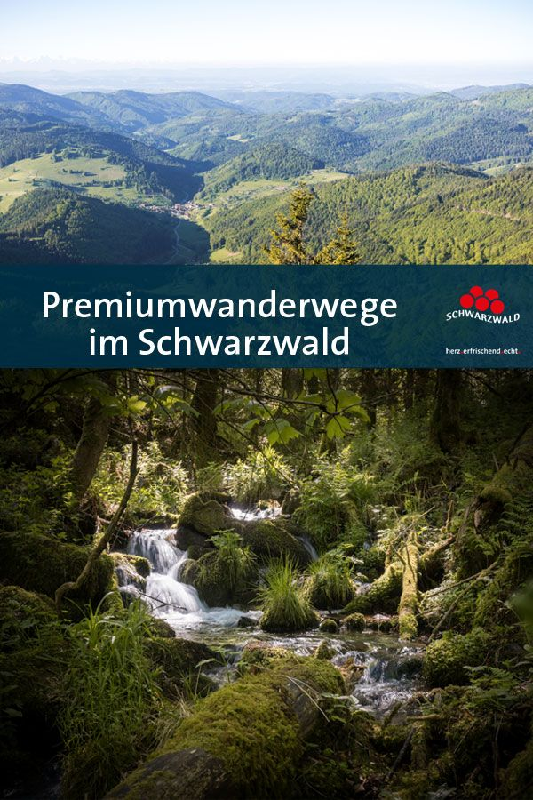Premiumwanderwege im Schwarzwald