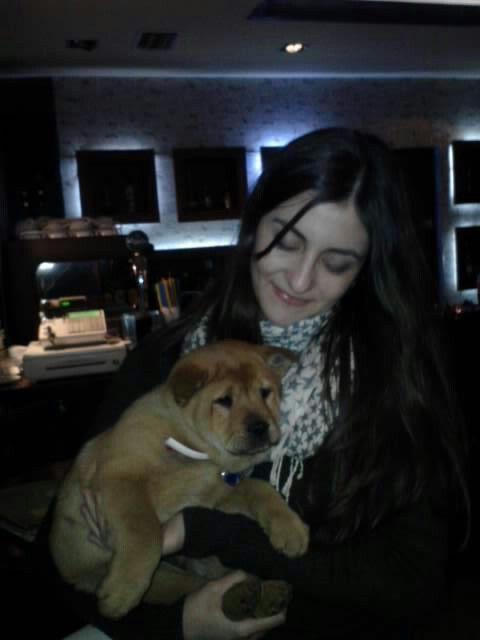 Puppy ♡chow