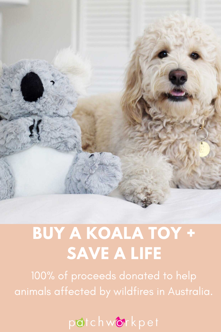 Koala In 2020 Dog Toys Patchwork Pet Koala