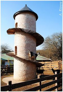 TIEMPO DE LUZ Y SOMBRA: Una Torre Para Cabras