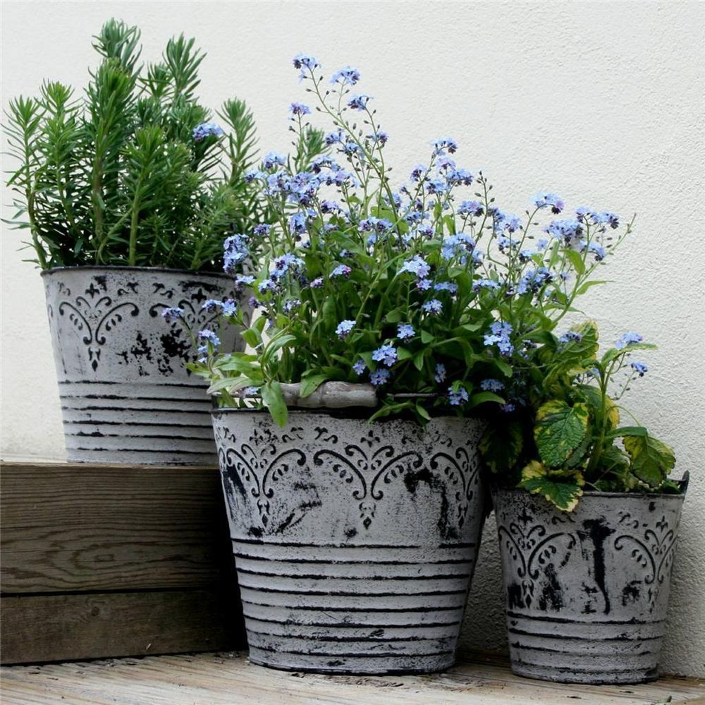 details about vintage metal buckets planters with handles shabby chic garden flower pots tubs. Black Bedroom Furniture Sets. Home Design Ideas