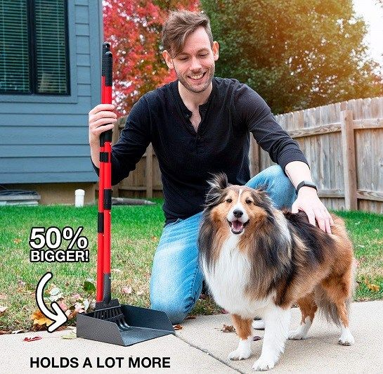 Pin on Pets Gadgets & Accessories