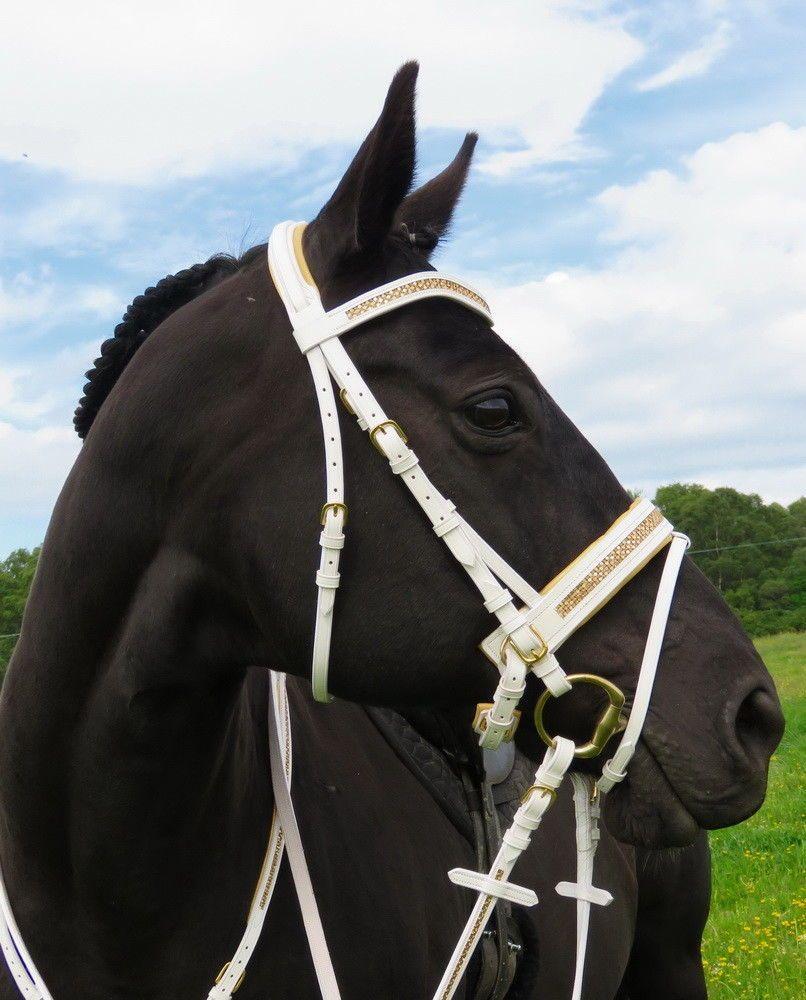 FSS JET BLACK GLITTER BLING Curve Browband Padded Noseband Comfort PATENT Bridle