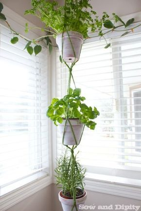 Easy DIY Macrame Hanger is part of Hanging plants indoor, Hanging plants, Hanging plants diy, Plant decor, Plants, Bathroom plants - Keep your fresh herbs right at your finger tips with this DIY Macrame Hanger  An easy design with 3 tiers
