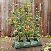 grow veggies in a bag