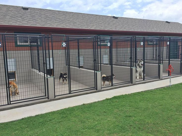 Choosing The Right Dog Boarding Facility For Your Pet Dog