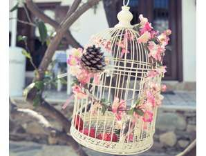 Singapore wedding decor diy ideas bird cage ang pow box add a singapore wedding decor diy ideas bird cage ang pow box add a picture of the junglespirit Images