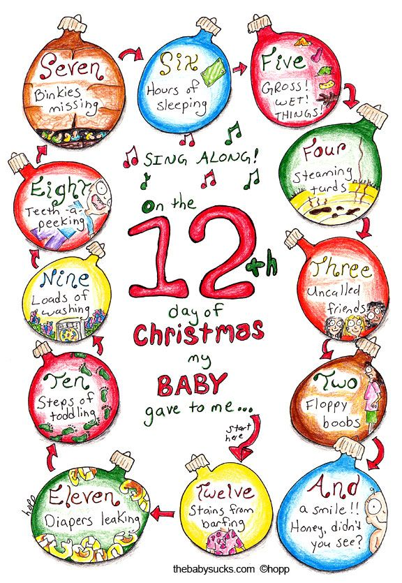 Twelve Days Of Christmas Baby Day 12 Days Of Xmas 12th Day Of Christmas