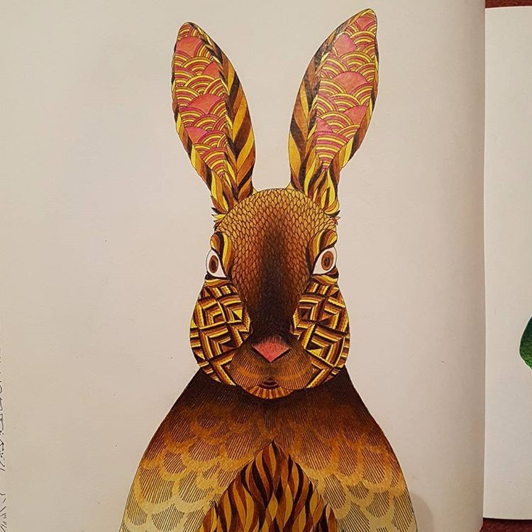 Spend Way To Many Nights Colouring The Milliemarotta Animal Kingdom Adult Colouring Book
