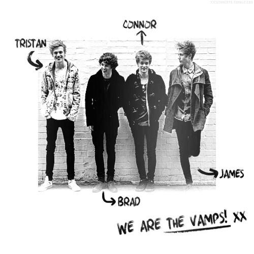 Anggota The Vamps