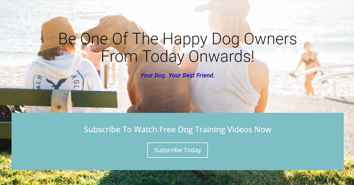 Be One Of The Happy Dog Owners From Today Onwards