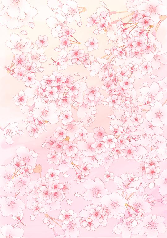 Cute Aesthetic Cherry Wallpaper