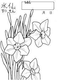 塗り絵 11月 花の画像検索結果 ぬりえ