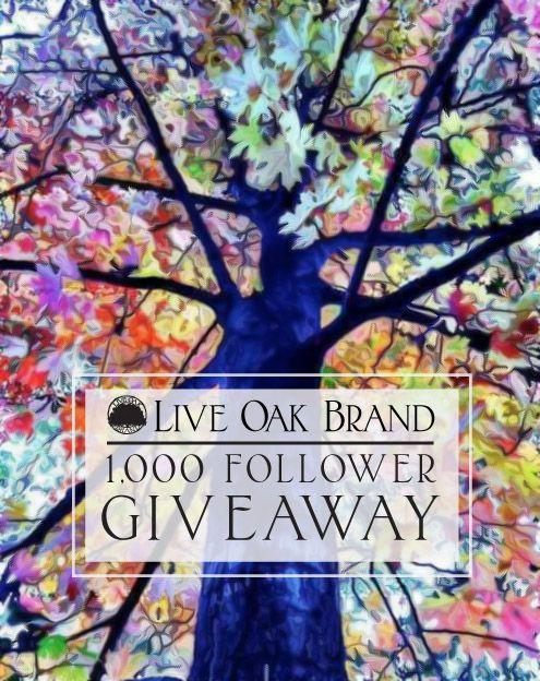 Rainbow tree social media promotion design -Stefani Graf