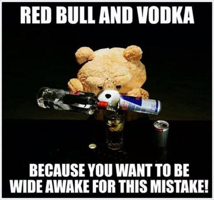 2207b693878bda6019bef64893e58d76 red bull and vodka pin blogger funny gif pinterest red bull