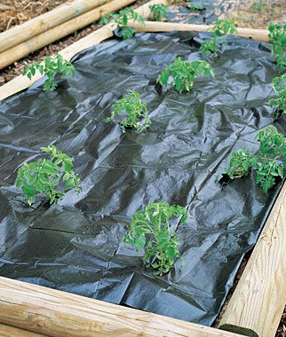 Nice Weed Control For Gardens | ... Home Gardening Supplies Garden Growers Weed  Control Fabric Nice Look