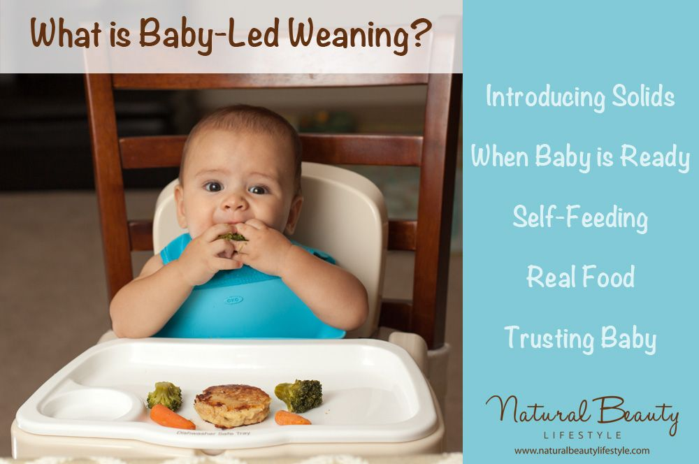 What is baby led weaning baby led weaning is the introduction of baby led weaning is the introduction of solid foods forumfinder Image collections
