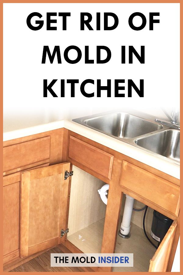 How To Remove Mold In Kitchen (100% Doable | Mold remover ...