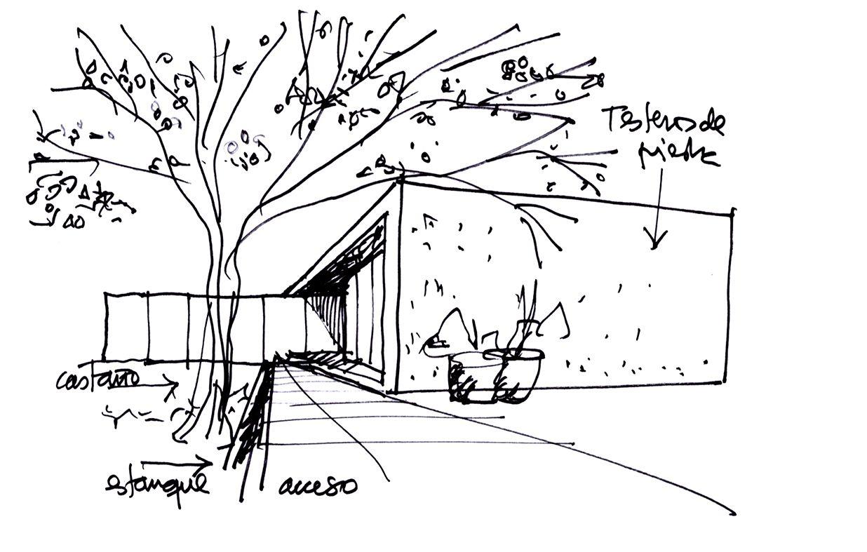 galer u00eda de la casa y los arboles    iglesis arquitectos
