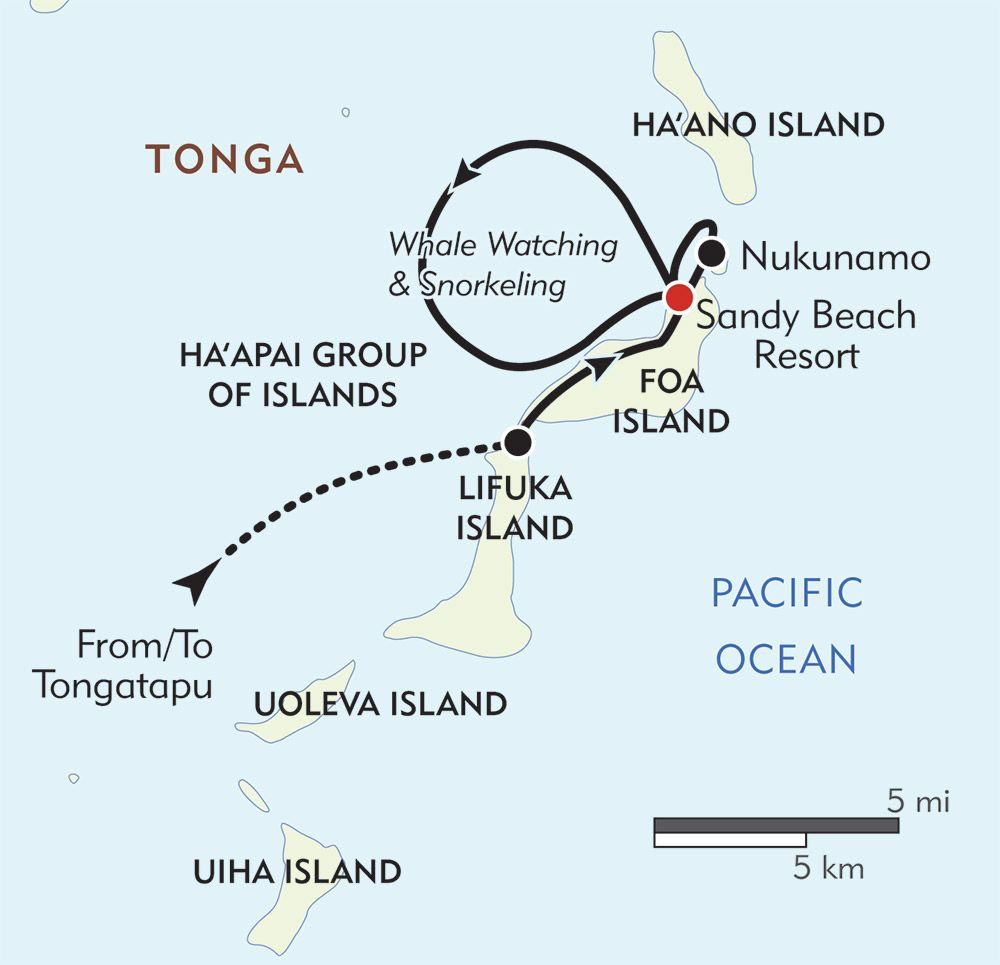 Pin by amy alton on tonga pinterest humpback whale and south discover tongas enchanting haapai islands on a journey filled with sea kayaking adventures snorkeling and spectacular encounters with humpback whales pooptronica