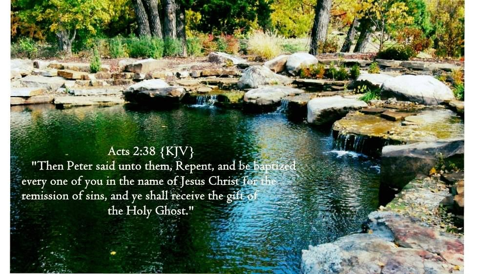 Acts 238 kjv then peter said unto them repent and be