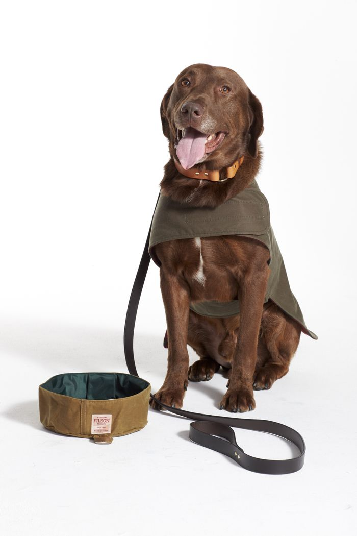 Pet Accessories By Filson Barbour Rescue Dogs By Seattle Humane Pet Accessories Rescue Dogs Pets