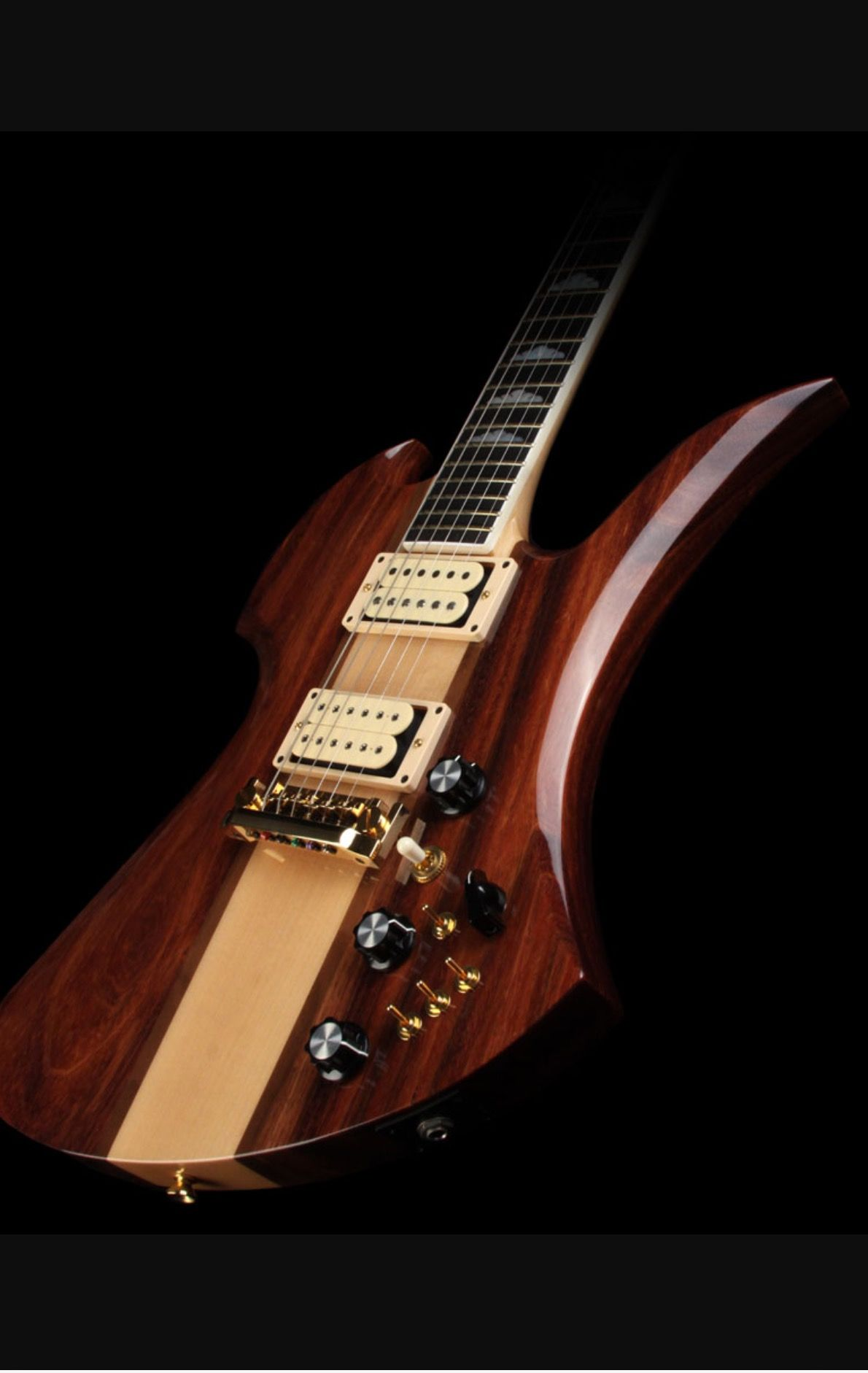 B C  Rich Mockingbird