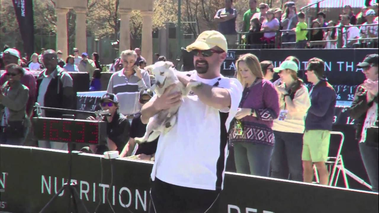 Purina Pro Plan Incredible Dog Challenge 2016 Eastern