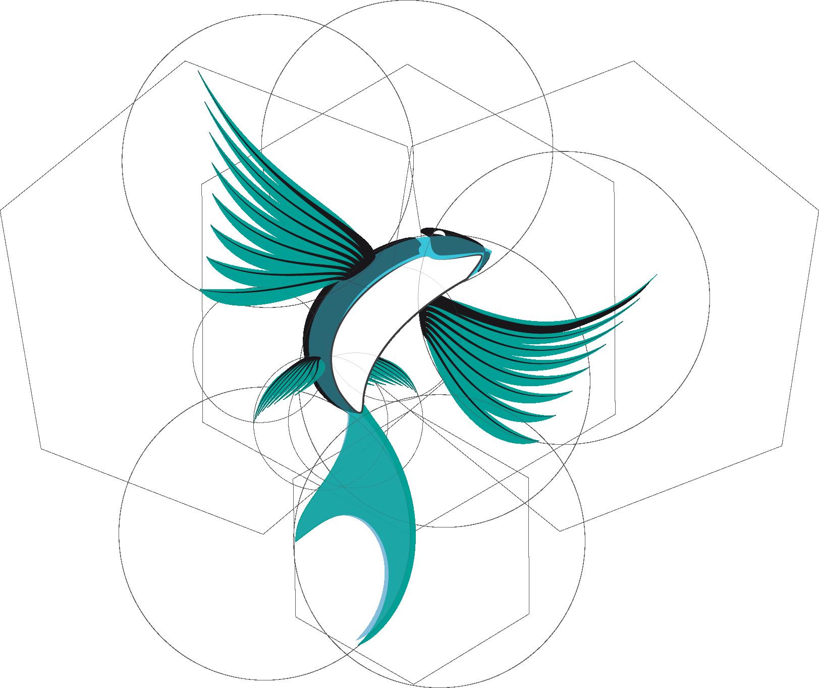 Flyingfish Logo El Logo Del Pez Volador Glassdune In 2018
