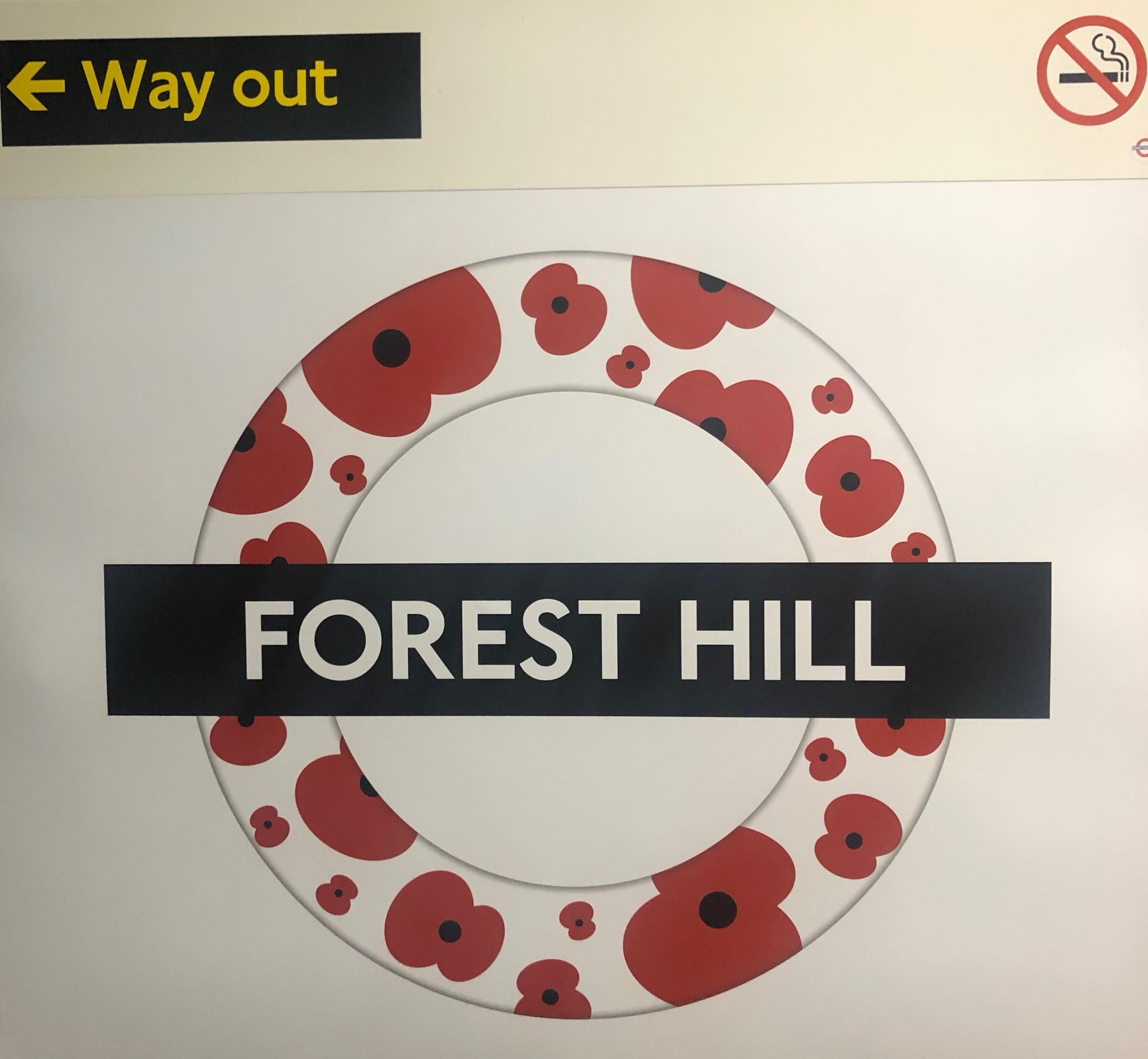 Forest Hill Poppies Forest hill, Forest