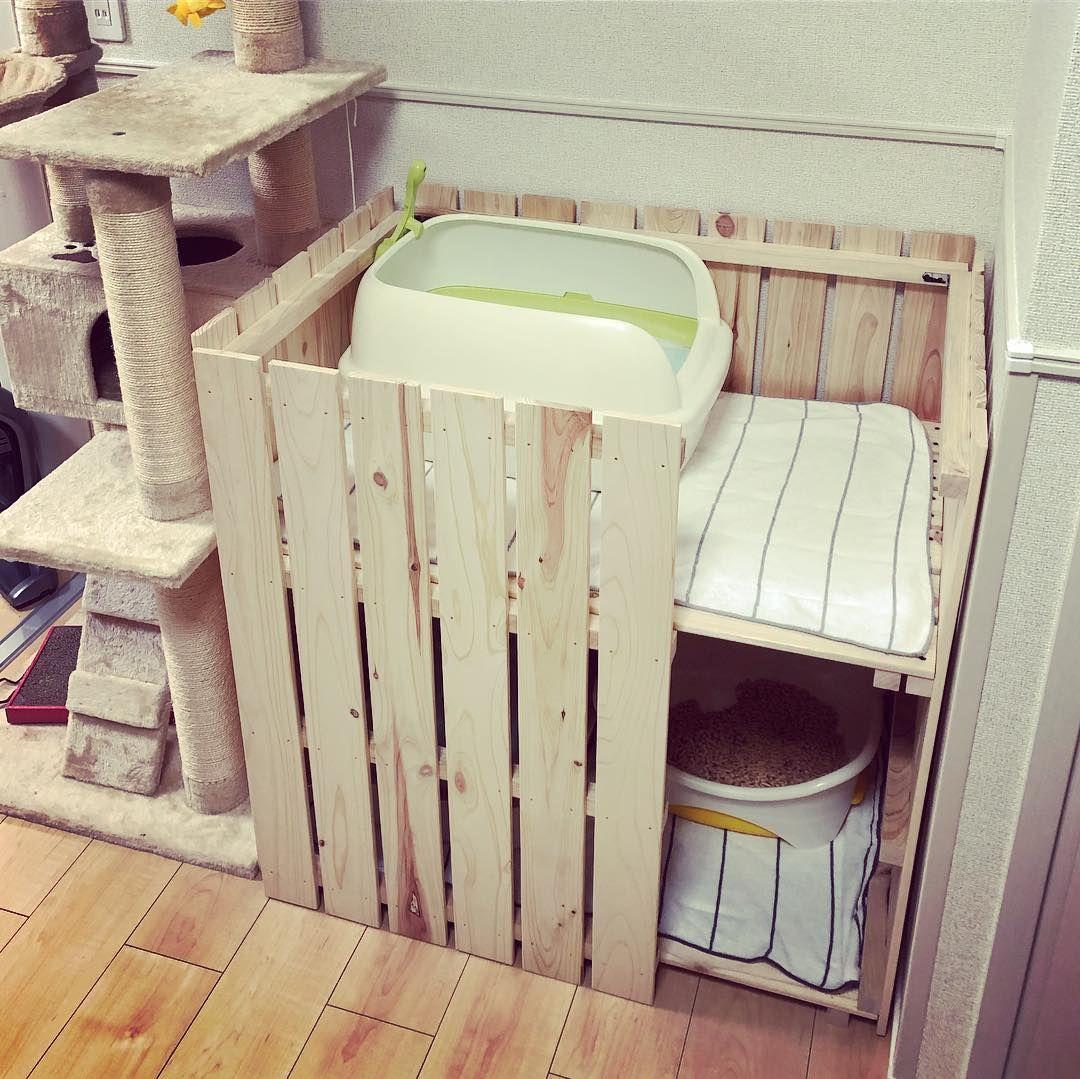Misaki Hashimoto On Instagram レオナの力作 すのこで作った猫トイレカバー 想像以上にいい感じ ちなみにうちの猫 2匹中1匹は砂ではなくシートで用を足します 猫 ロシアンブルー 猫トイレ 猫トイレカバー 猫トイレ隠し 猫 トイレ 玄関収納アイデア
