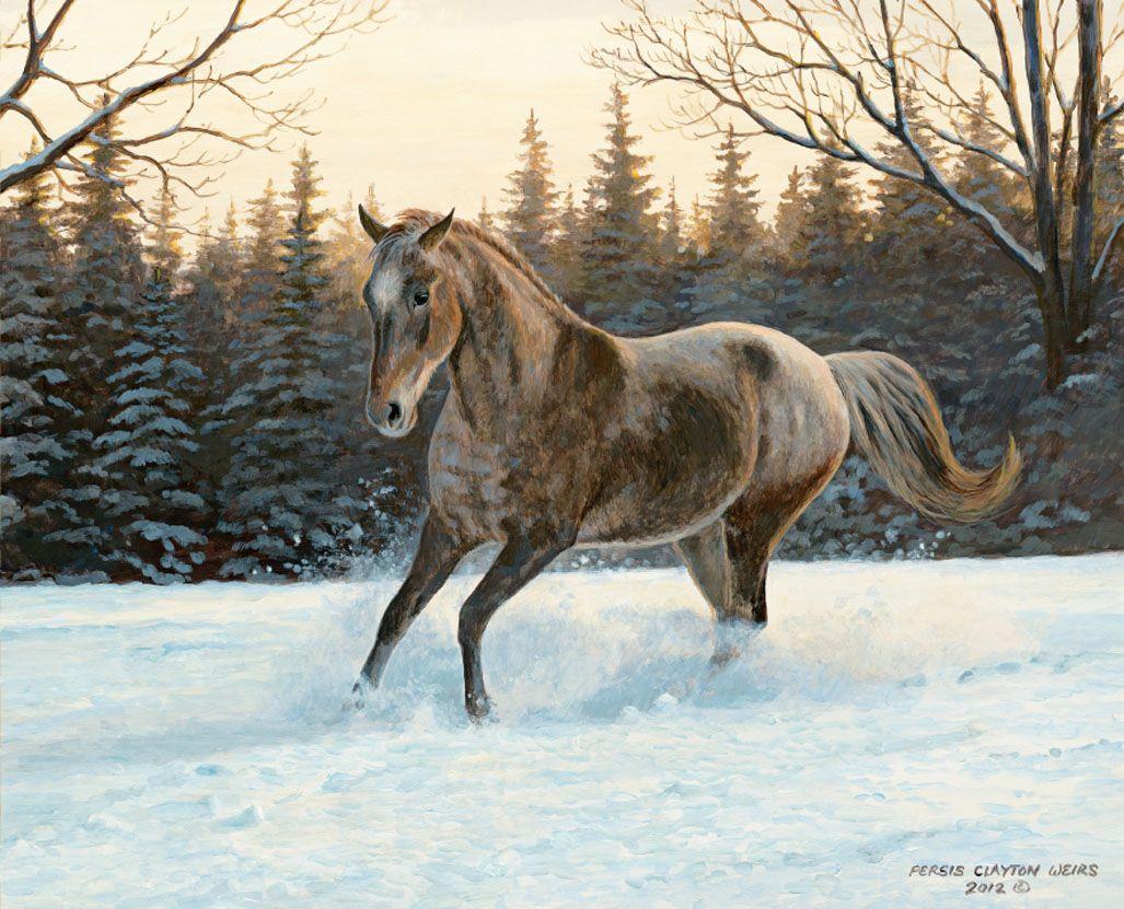 January 2014 desktop wallpapers Horses in the
