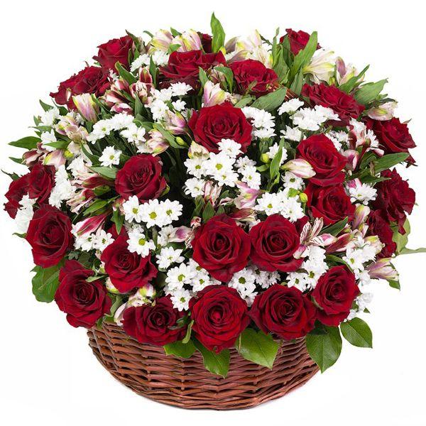 Артикул: 032-41 Состав: 29 роз красного цвета, 19 альстромерий, 19 хризантем белого цвета Размер: Высота 60 см Роза: Выращенная в Украине http://rose.org.ua/tsvety-v-korzine-svezesrezanie/1468-emotsii.html #цветы #заказатьцветы #доставкацветов #купитьцветы #цветывкорзине #заказатьцветывкорзине #доставкацветовкиев #цветывкорзине #доставкацветовпоукраине #flowers #SendFlowers #RoseLife