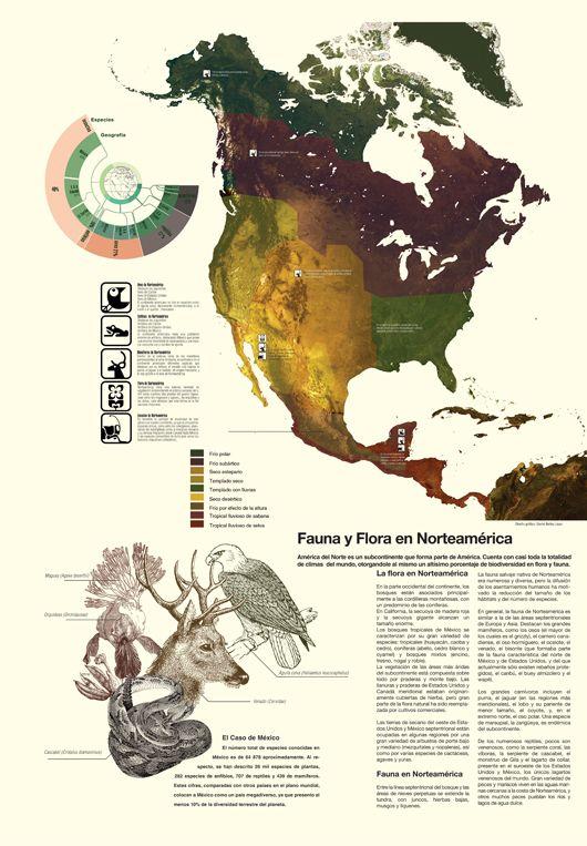 Infographic by Daniel Barba  by Daniel Barba
