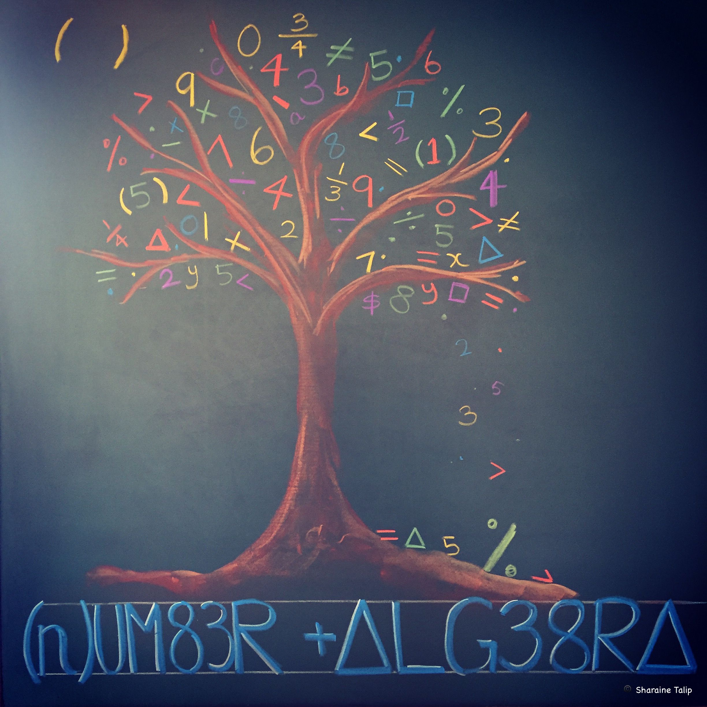 Number Algebra Main Lesson Chalkboard Drawing 6th Grade