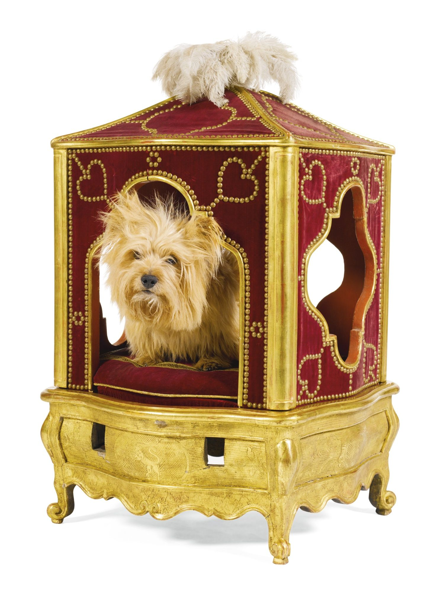 A rare giltwood and gesso dog`s sedan chair Louis XV