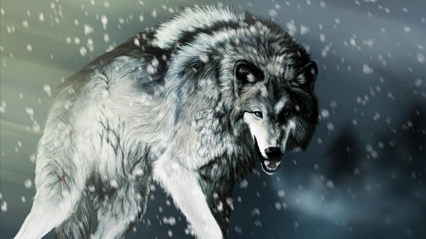 Angry Wolf Wallpaper Widescreen Animal