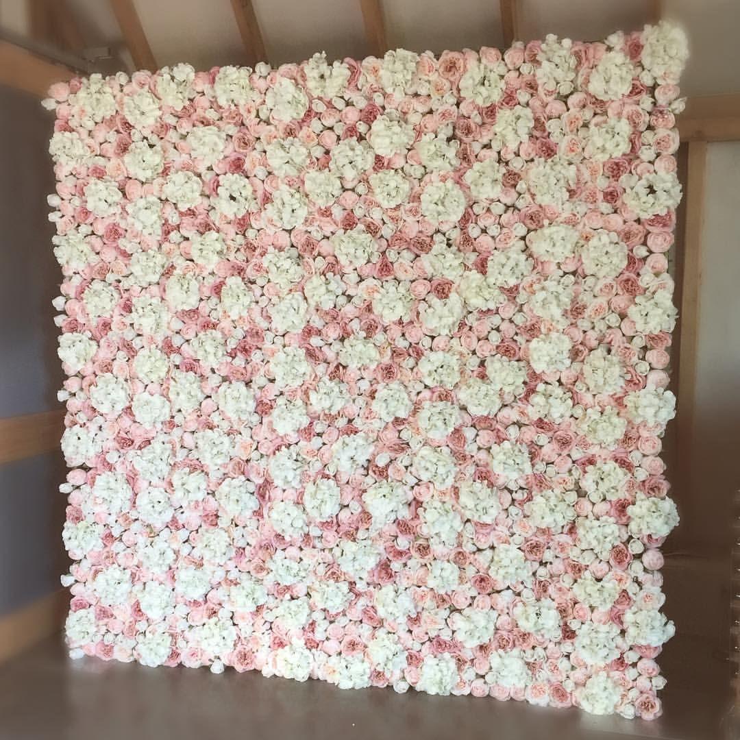 Blush flower wall flower wall backdrop wallpaper