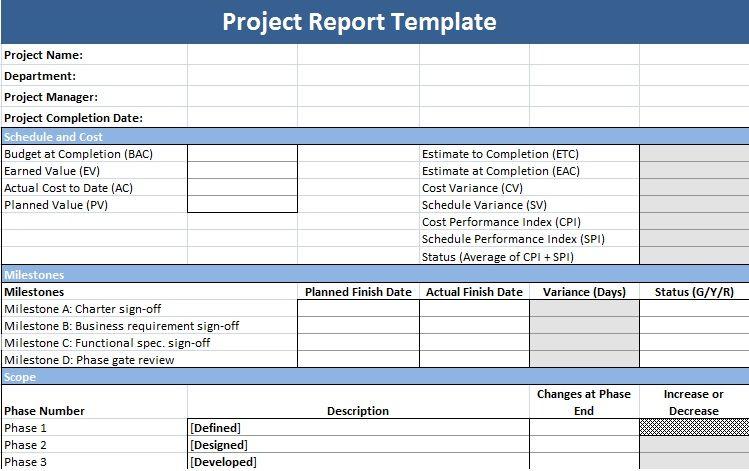 microsoft project report templates