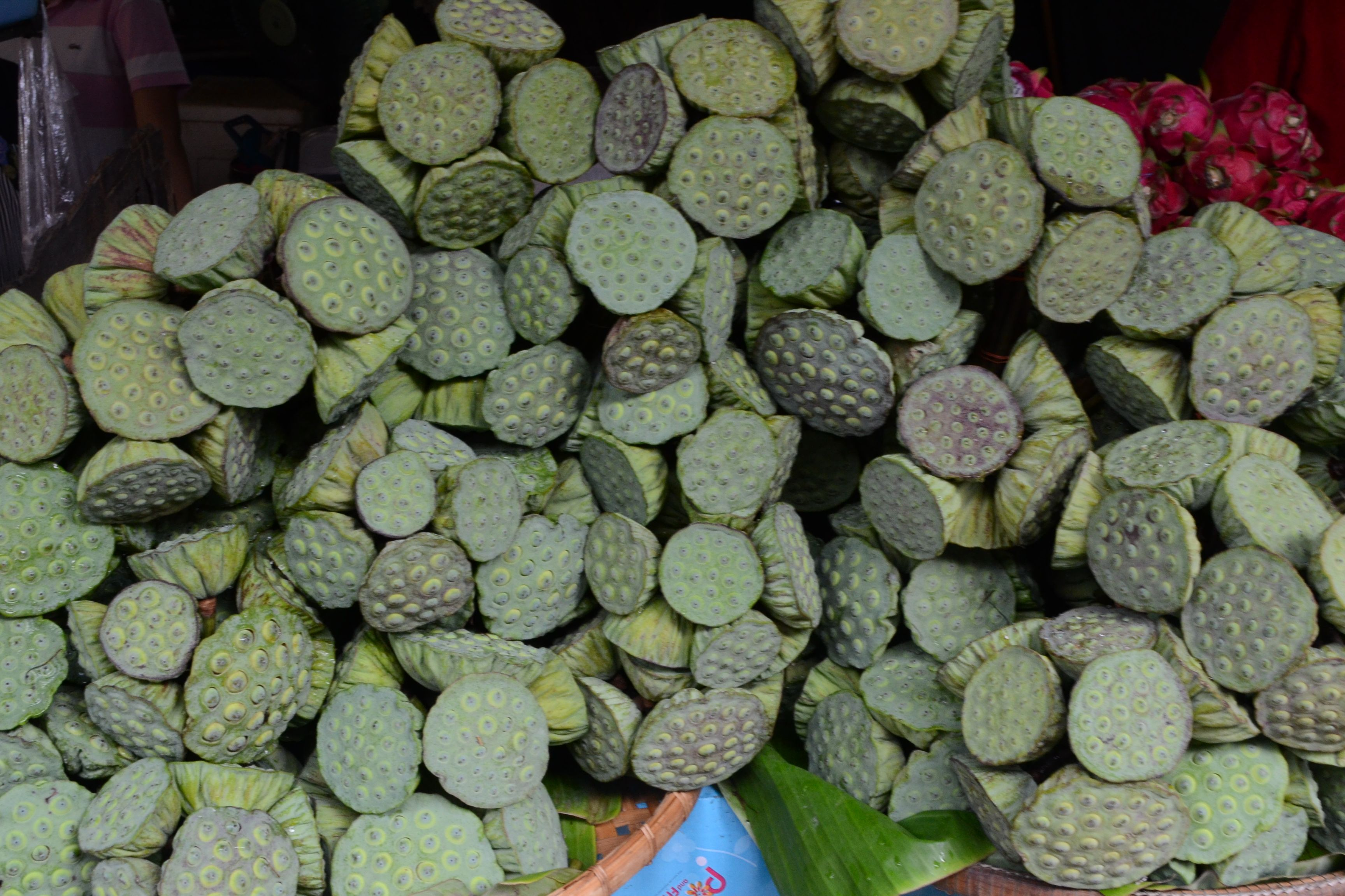 Lotus seed podse nuts are edible so are lotus roots unusual lotus seed podse nuts are edible so are lotus roots izmirmasajfo