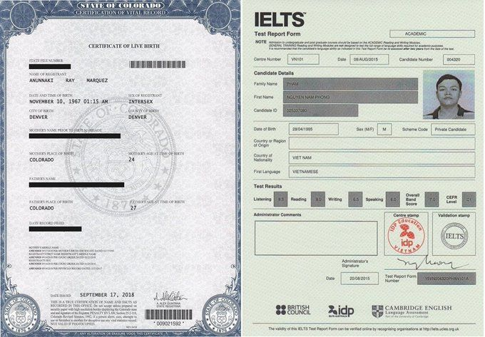 certificate birth fake ielts certificates elvis template without exam death sample wodze novelty ga denver within templates handplanegoodness recognition marriage