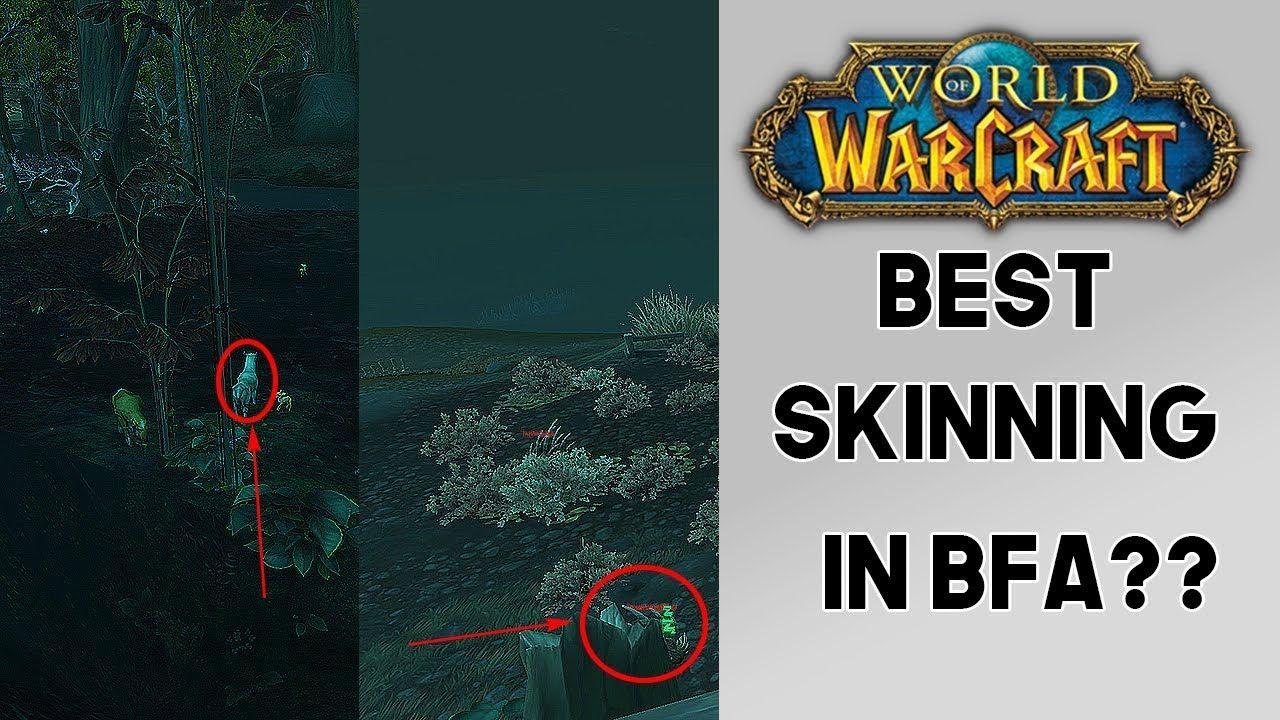 World of Warcraft Insane Skinning Gold Farm! Best Skinning