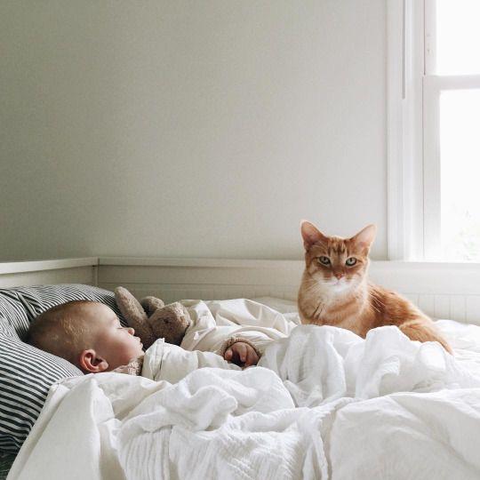 tout ce qui me touche choubidou d 39 amour pinterest tes trouver neverland et brooklyn. Black Bedroom Furniture Sets. Home Design Ideas