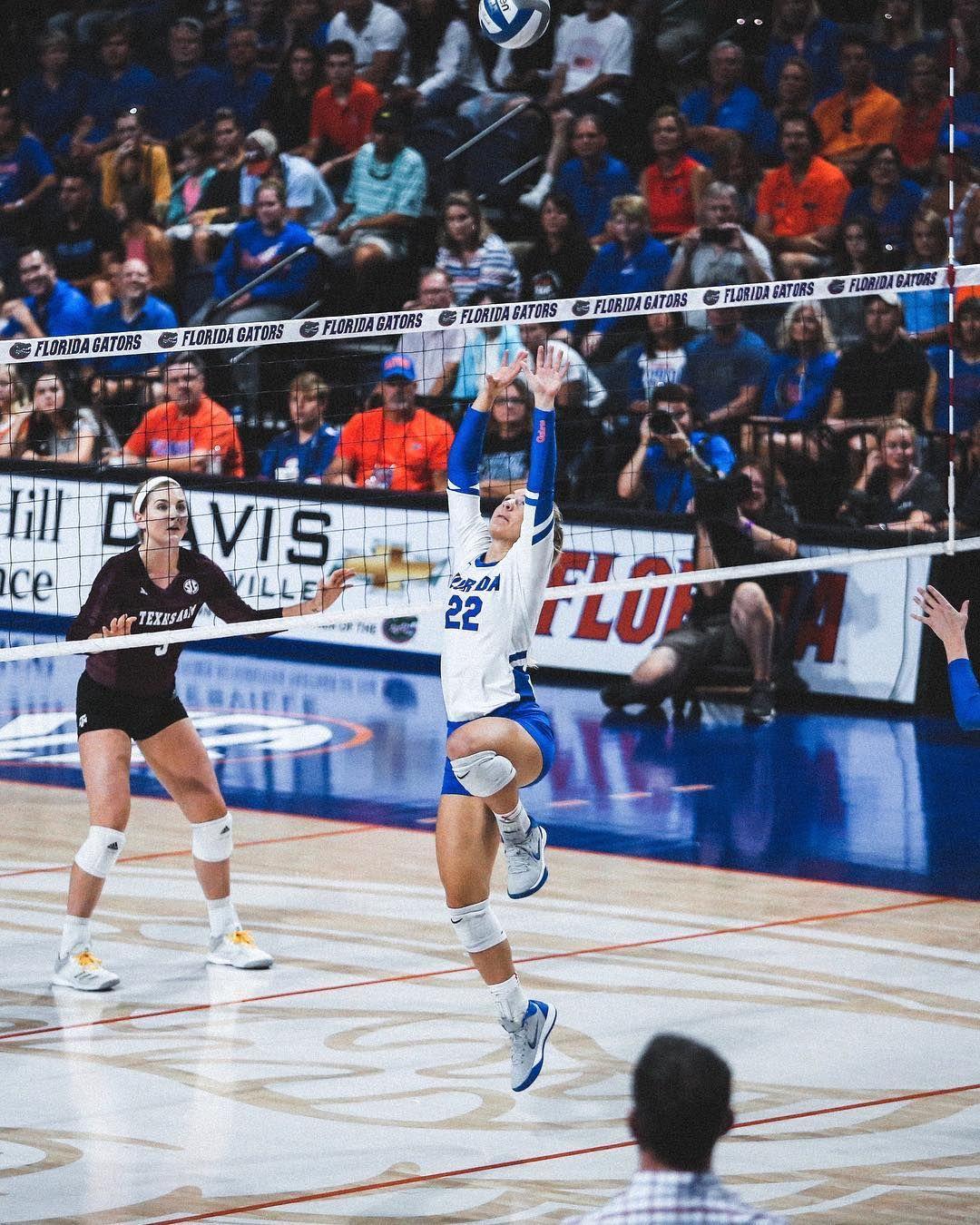 Gefallt 3 864 Mal 2 Kommentare Florida Gators Volleyball Gatorsvb Auf Instagram Gogators Tumblr Voleibol Voley Voleibol