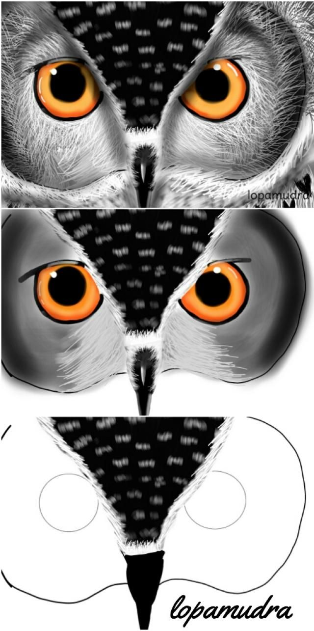 how to draw an owl step by step zentangle step outs malerei kunst und malen. Black Bedroom Furniture Sets. Home Design Ideas